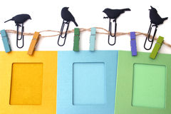 Photo frames with clips isolated birds Stock Photos