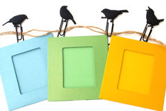 Photo frames with clips isolated on a white birds Stock Images