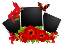 Photo frames with flowers Stock Photos