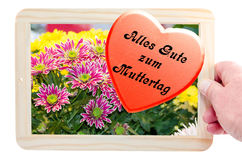 Photo frames with flowers image and heart Royalty Free Stock Photos
