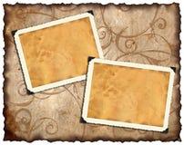 Free Photo Frameworks Stock Images - 6603434