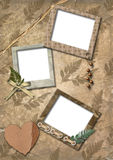 Photo frameworks, heart, herbarium Royalty Free Stock Image