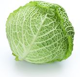 Photo of fresh cabbage Stock Image