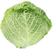 Photo of fresh cabbage. Stock Images