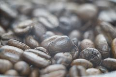 Photo of a fresh coffee beans stock image