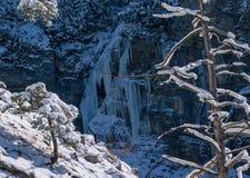 Photo of a frosen Landscapes. A Photo of a frosen Landscapes Royalty Free Stock Photo