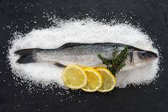 Raw fish. Photo of a full raw fish on a bed of sea salt and on black slate with lemon slices and thyme Royalty Free Stock Photo