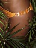 Photo of girl thighs in orange bikini Stock Image