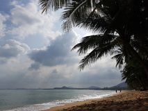 Photo of gloomy cloudy sky, palm trees on seashore. In evening Royalty Free Stock Image