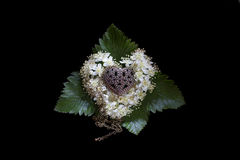 Photo of a golden heart on a pillow of flowers of mountain ash on a black background. Royalty Free Stock Images
