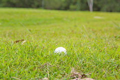 Photo of a golf ball lying in the rough grass. Green hobby  hole round sand sport Royalty Free Stock Photo
