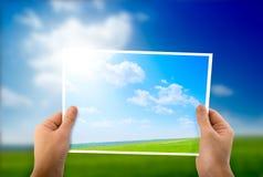 Photo of green field Stock Photo