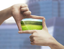 Photo of green field in hands Stock Photo