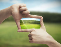 Photo of green field in hands royalty free stock image