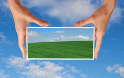 Photo of green field in hands Royalty Free Stock Photo