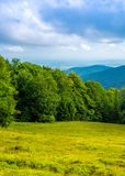 Photo of green forest and valley in Carpathian mountains Stock Images