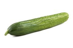 Photo of green ripen cucumber Royalty Free Stock Images