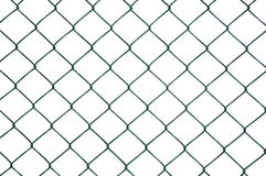 Photo green wire mesh, metal fence. Isolated, white background. Royalty Free Stock Images