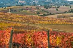 Photo of Gualdo Cattaneo medieval village in Umbria. Beautiful view of Gualdo Cattaneo medieval village in Umbria on autumnal vineyard Stock Photos