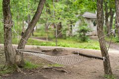 Photo of hammock in the forest glade royalty free stock images