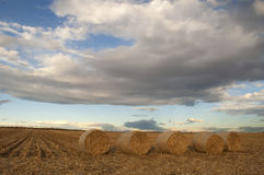 Photo of hay bale in rural Colorado. With stormy cloud sky Stock Photo