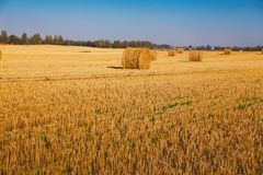 Haystack on a sloping field. Photo of  haystack on a sloping field Royalty Free Stock Photos