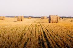 Haystack on a sloping field. Photo of  haystack on a sloping field Stock Photography