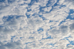 Photo of high blue sky with spindrift clouds background Royalty Free Stock Image