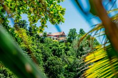 The photo of the house on the mountain in the tropical forest stock photos