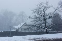Photo of House Near Tree During Winter Stock Photography