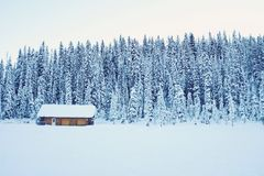 Photo of House With Roof Covered With Snow Near Pine Trees during Winter Season Royalty Free Stock Photos