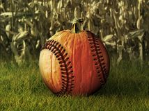 Baseball Pumpkin in Fall Setting Stock Photos