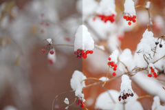 Photo before and after the image editing process. Winter scene Royalty Free Stock Photography