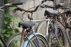 Bicycles in town Stock Photography