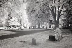 Photo infrarouge d'un cimetière photos libres de droits