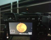 Photo inside photo royalty free stock image
