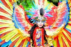 Fashion Carnival royalty free stock image