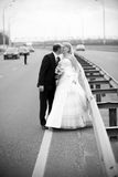 Photo of just married couple kissing on highway Royalty Free Stock Image