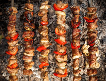 Photo of kebab being cooked on fire Royalty Free Stock Photo