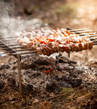 Photo of  kebab on fire at forest Royalty Free Stock Photography