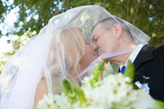 Photo of a kissing couple outdoors royalty free stock photography
