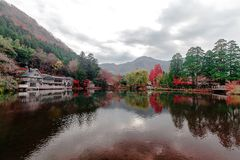 Photo of Lake Next to a White House and Green and Red Trees Stock Photo