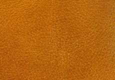Leather Background Texture Royalty Free Stock Image