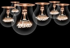 Light bulbs concept. Photo of light bulbs with shining fibres in idea, inspiration, innovation, invention, concept and creativity shape on black background Royalty Free Stock Photos