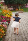 Little beautiful girl in flowers park. Photo of little beautiful girl in flowers park Stock Images