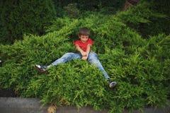 Little boy lying on juniper stock photography