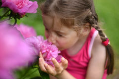 A photo of a little girl smelling big bright flowers with her eyes closed. A beatiful and peaceful photo of a little girl smelling big bright flowers with her royalty free stock photography