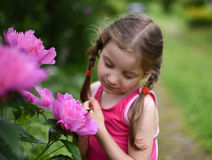 A photo of a little girl smelling big bright flowers with her eyes closed. A beatiful and peaceful photo of a little girl smelling big bright flowers with her royalty free stock photos