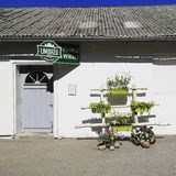 The photo of the local latvian milk manufacturer shop based in cute old white building, city of Limbazi royalty free stock photo