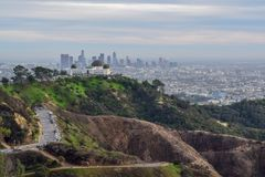 Los Angeles Skyline and Nature from Mount Hollywood royalty free stock images